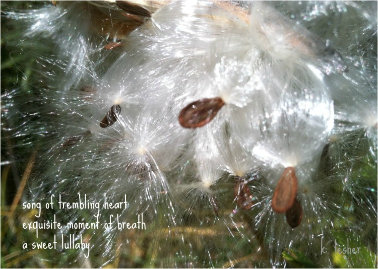 song of trembling heart